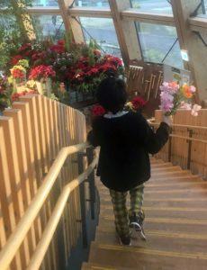 切り花を手に走り回る息子