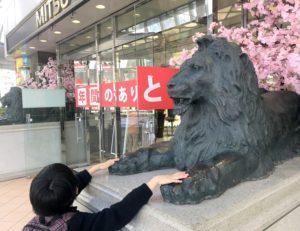 三越新潟店前のライオンとの別れを惜しむ息子