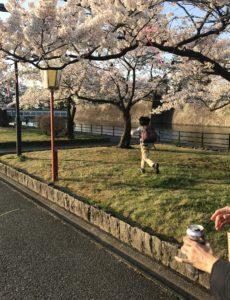缶ビールを片手に新発田城址公園を散歩する家族