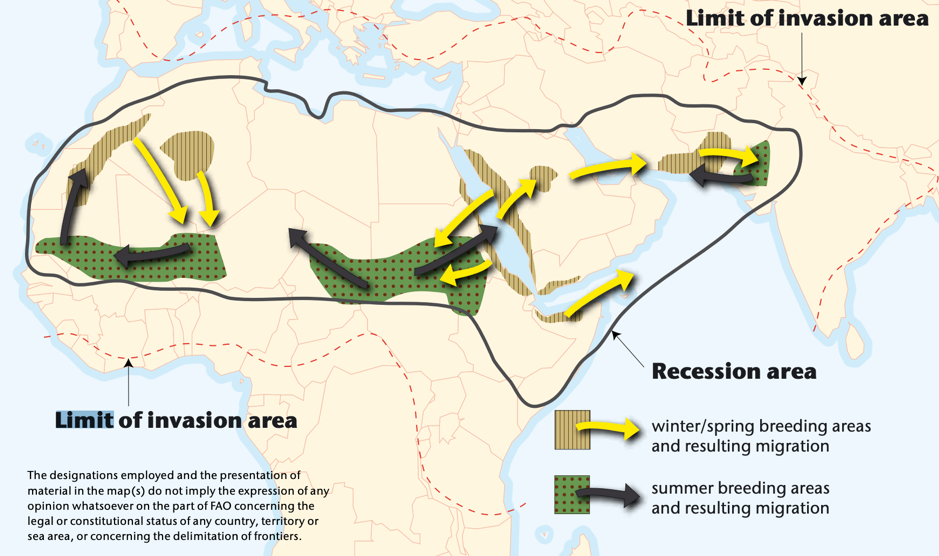 WHOが作成した「サバクトビバッタの襲来エリア」の図