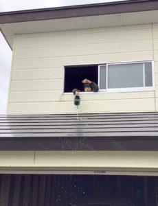 車庫の2階から水を流す息子