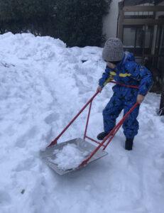 庭でスノーダンプを押す息子